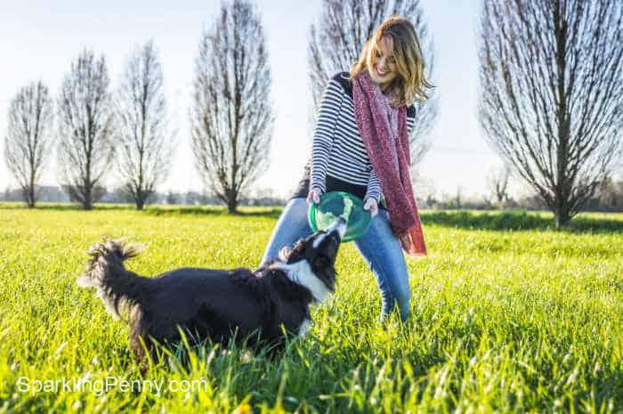 get fit on a budget walking your dog