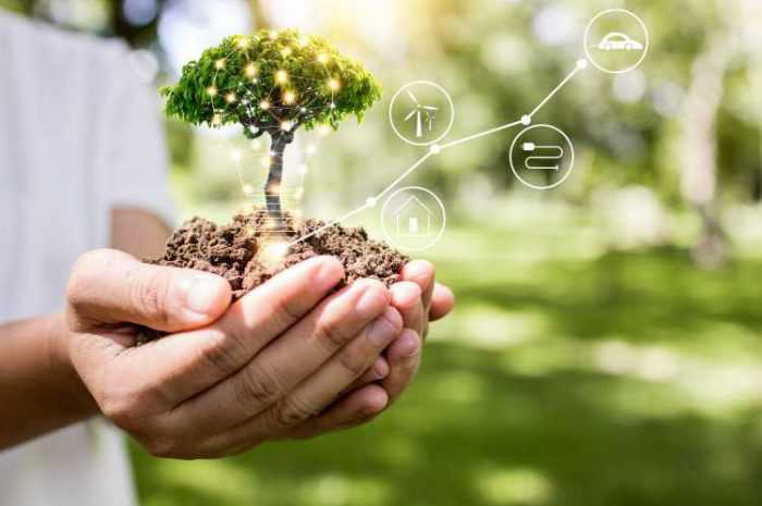 how saving electricity helps the environment