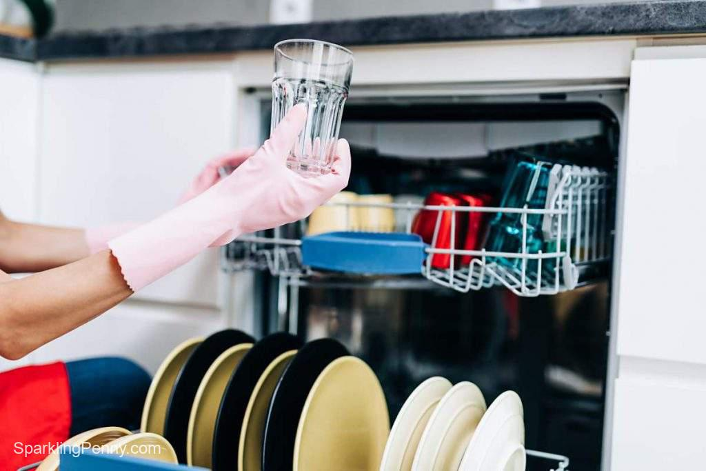 how to prevent your dishwasher from smelling like wet dog